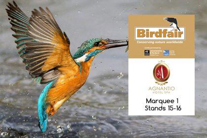 Birdfair 2019
