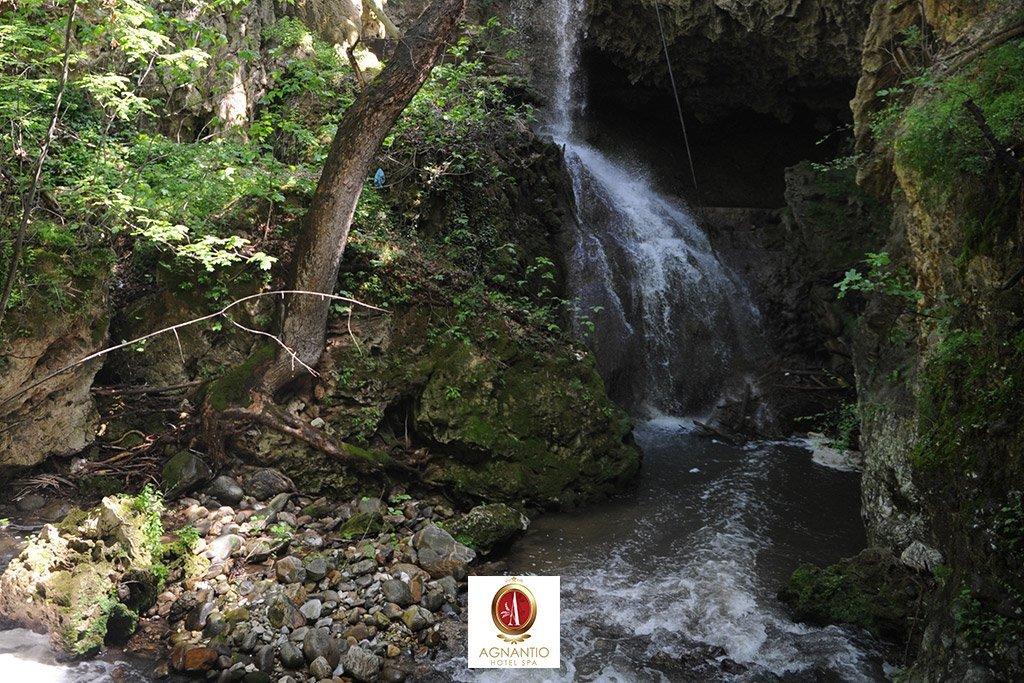 The Advantages and Disadvantages of Ecotourism